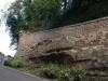Castle Grove